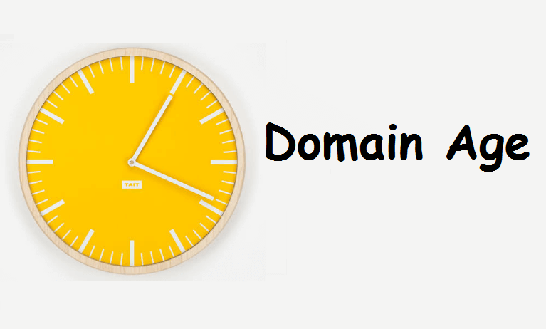 Importance of domain age for SEO