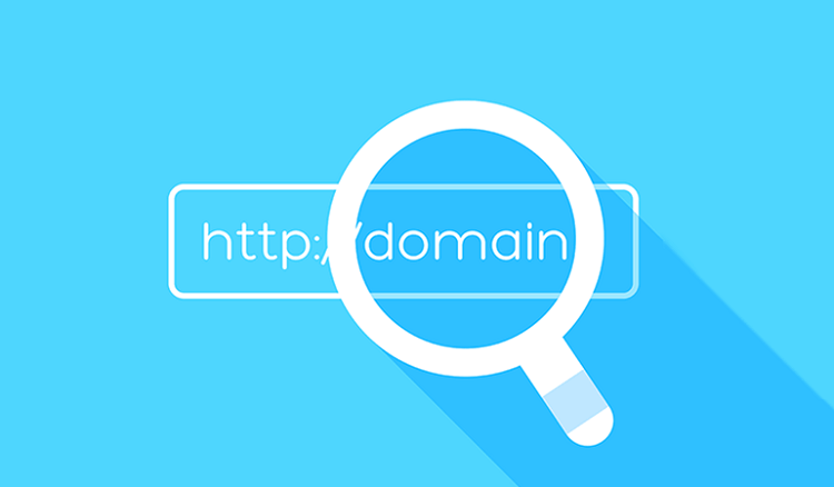Find the Domain Name Owner