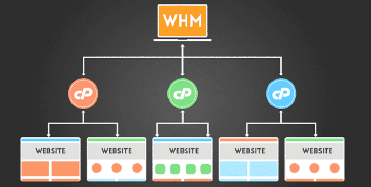 Use WHM to Manage Clients' Websites