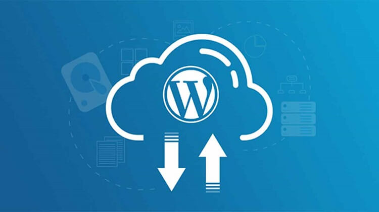 Create a Complete Backup of Your Website